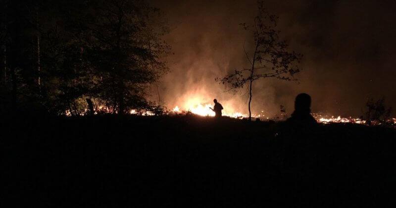 Incendie de forêt probablement causé par la foudre dans la région d'Opglabeek en province de Limbourg, la nuit du 7 au 8 août 2018. Crédit photo : Brandweerzone Oost Limburg