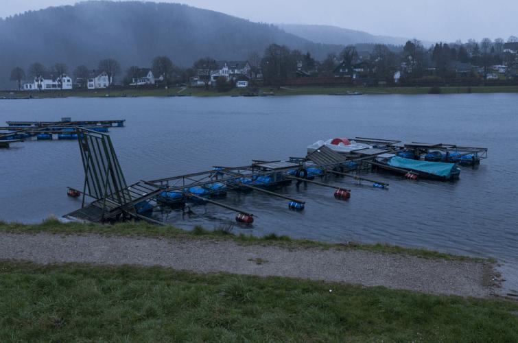 Ponton déplacé par la tornade de Roetgen sur le lac de Woffelsbach, le 13 mars 2019. Source : Eifelmomente.de