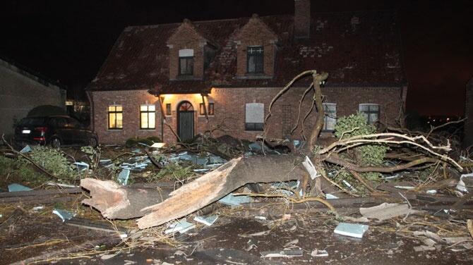 Dégâts perpétrés par la ligne de grains en province de Flandre Occidentale, le 25 janvier 2014. Source : VRT