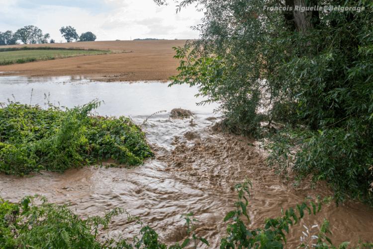 Coulées de boue à Dion-le-Val (Dion-Valmont) en province du Brabant Wallon, le 13 août 2020. Crédit photo : François Riguelle