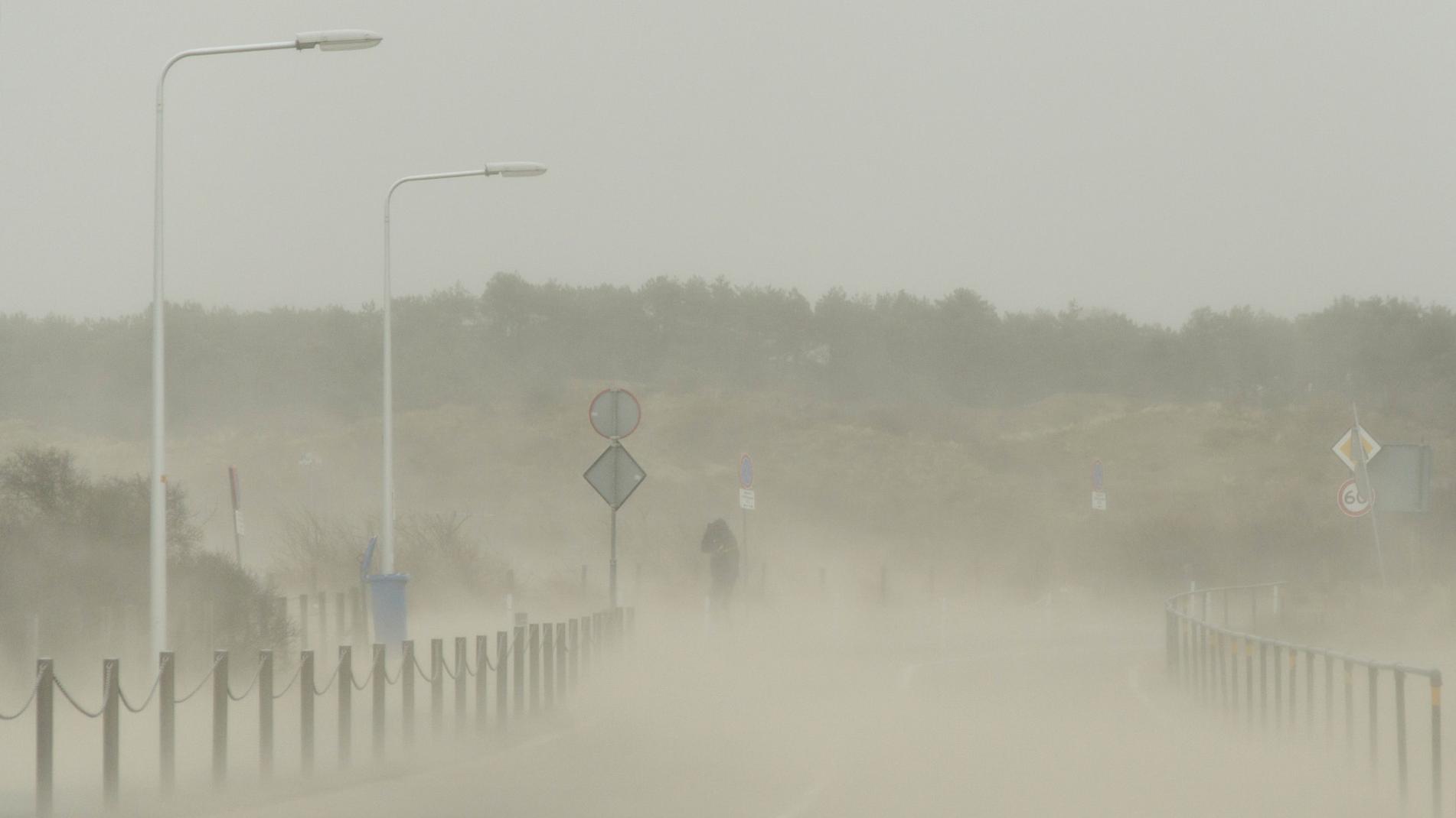 Instants d'orages – Hors-série – Tempête Friederike